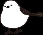 ブログ管理人(コハ子)