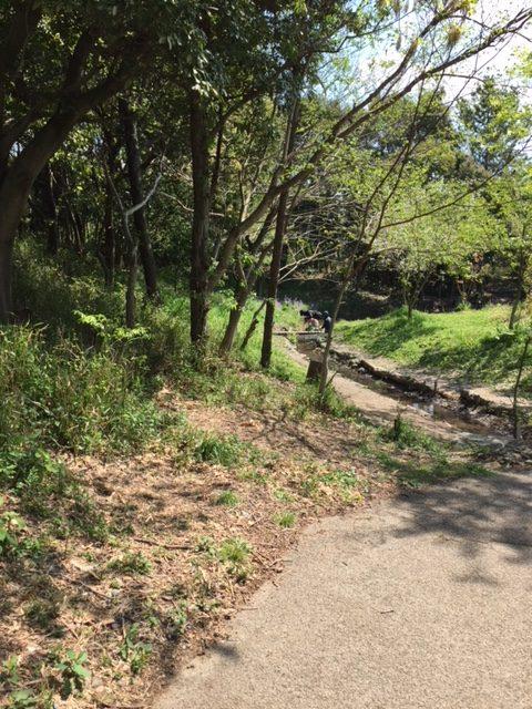 竜洋昆虫自然観察公園の北ゾーン
