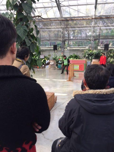 掛川花鳥園のバードショー