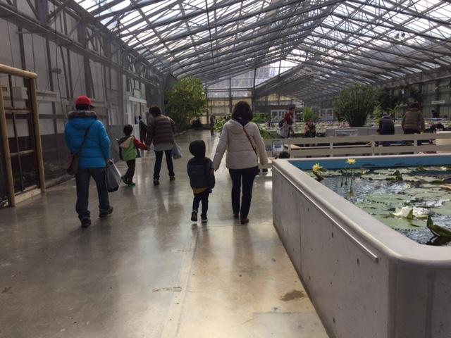 掛川花鳥園(インコのスイレンプールの横を歩く)