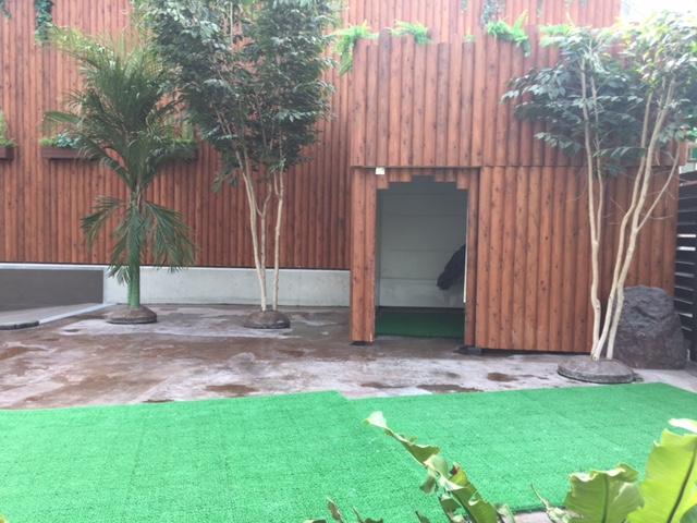 掛川花鳥園のハシビロコウ(部屋に籠もって見えず、動かない鳥だから諦めた)