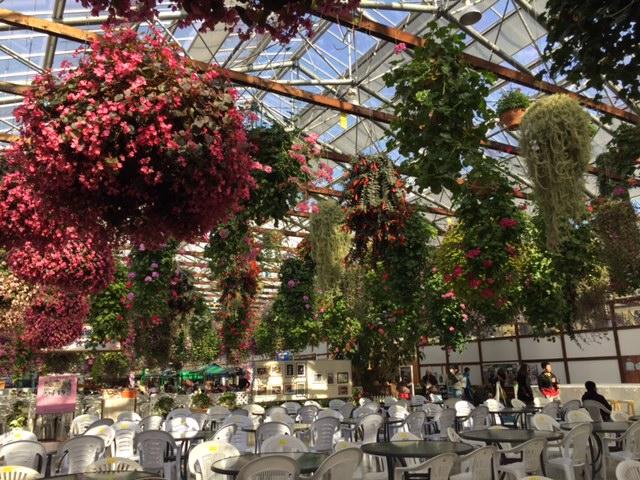 掛川花鳥園の飲食、休憩スペース