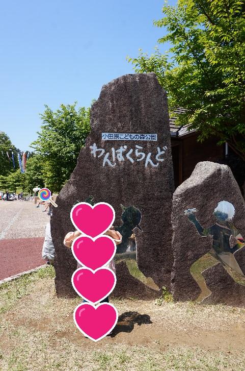 小田原こどもの森公園わんぱくらんどの入り口