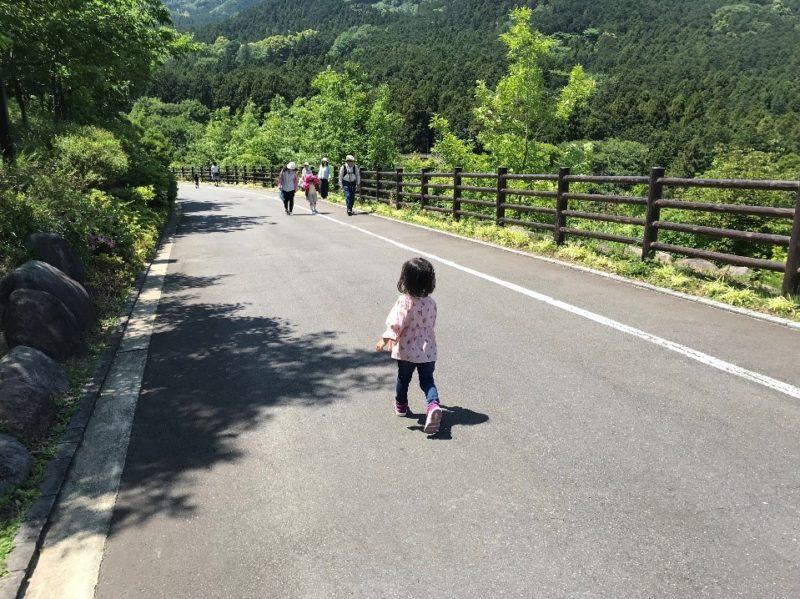 小田原こどもの森公園わんぱくらんどの園内の道
