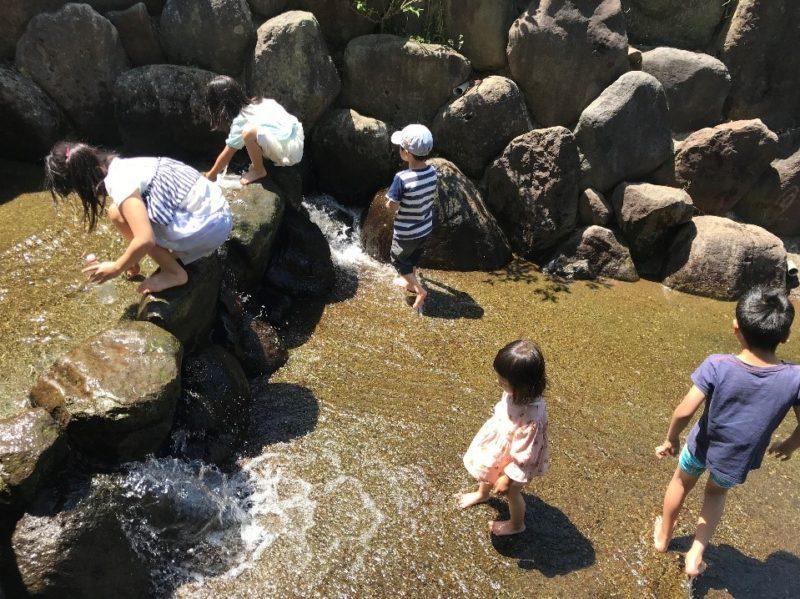 小田原こどもの森公園わんぱくらんどのうなぎ沢で遊ぶ子どもの姿