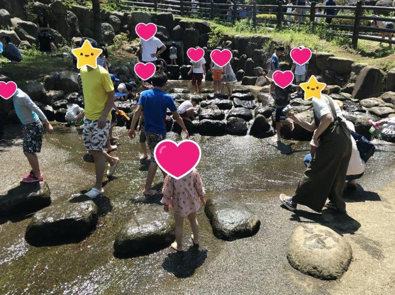 小田原こどもの森公園わんぱくらんどのうなぎ沢で遊ぶ