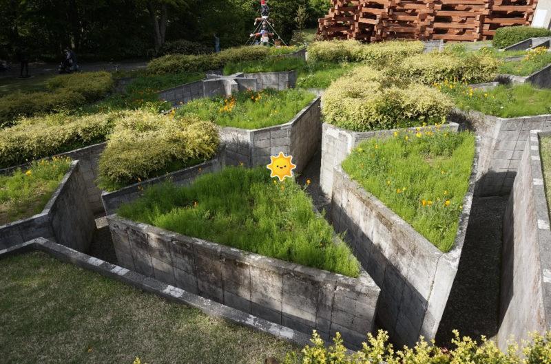 箱根彫刻の森美術館(星の庭)