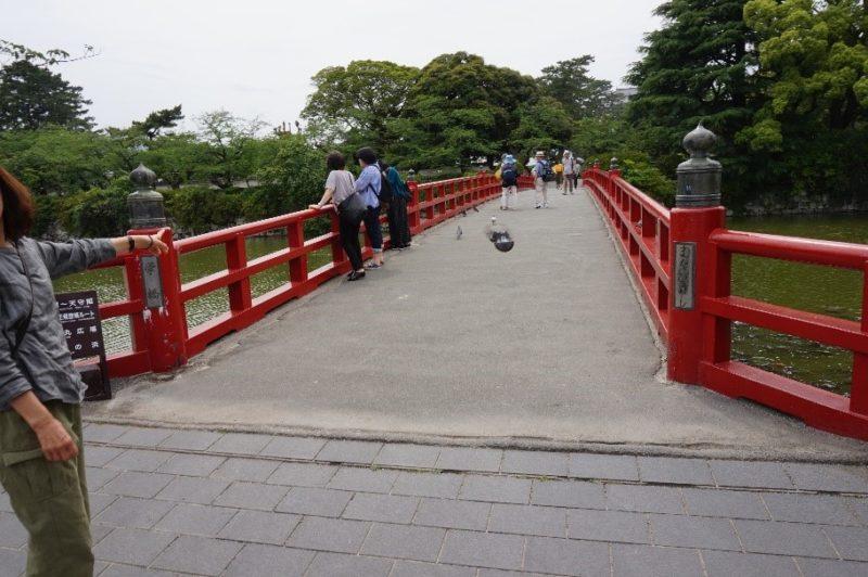 小田原城の学橋