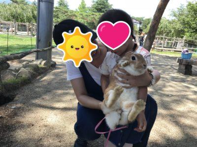 南ヶ丘牧場でウサギを抱っこする子ども(女の子)
