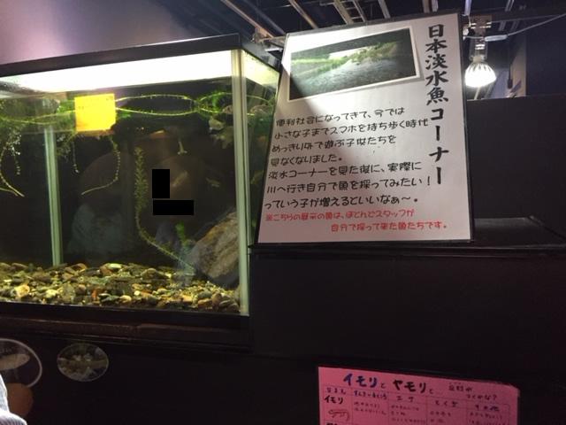竹島水族館の解説