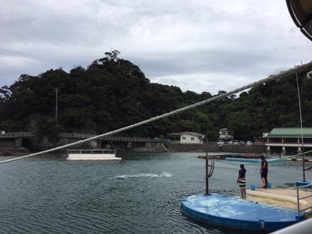 下田海中水族館の海上ステージ