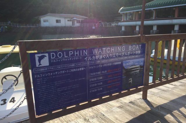 ドルフィンボートの案内看板