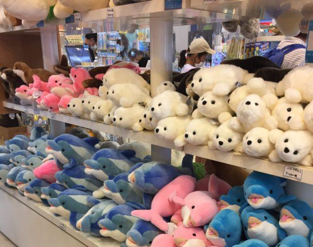 下田海中水族館のお土産コーナー