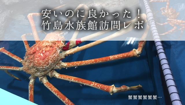 安いのに良かった! 竹島水族館訪問レポ
