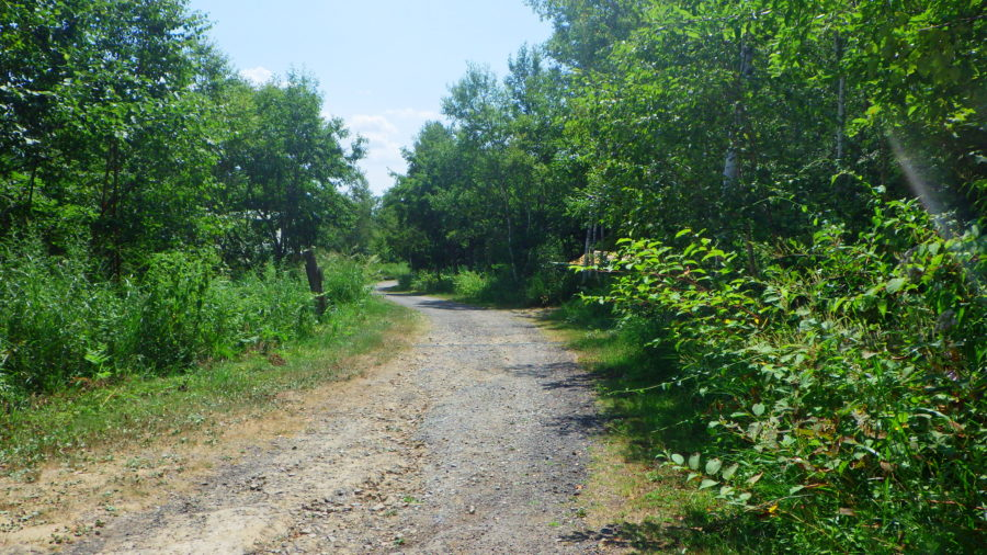 南乗鞍キャンプ場の舗装されていない道