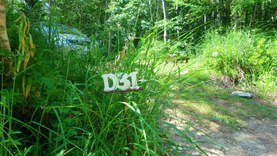 南乗鞍キャンプ場のD31(Dサイト)