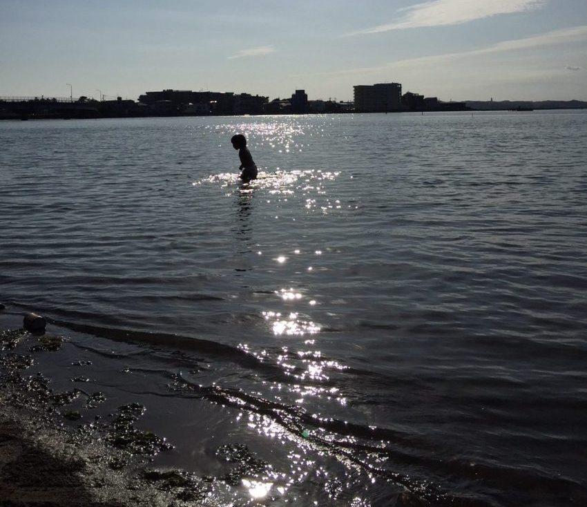 渚園の湖岸の水深