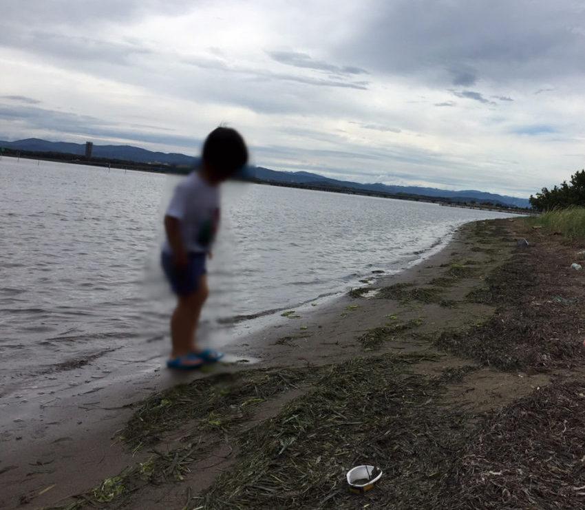渚園の湖岸(浜辺の様子)