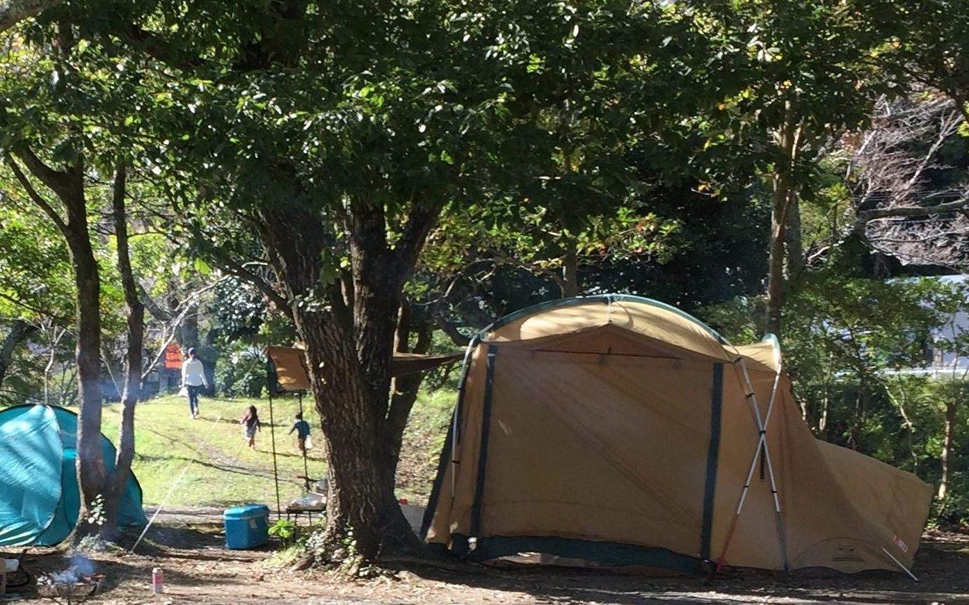 ならここキャンプ場一般サイトで秋キャンプ