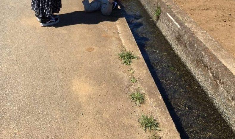 つる道の駅近くの水路