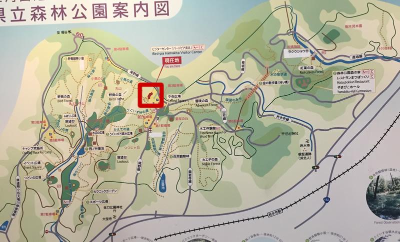 浜北森林公園の地図(看板)