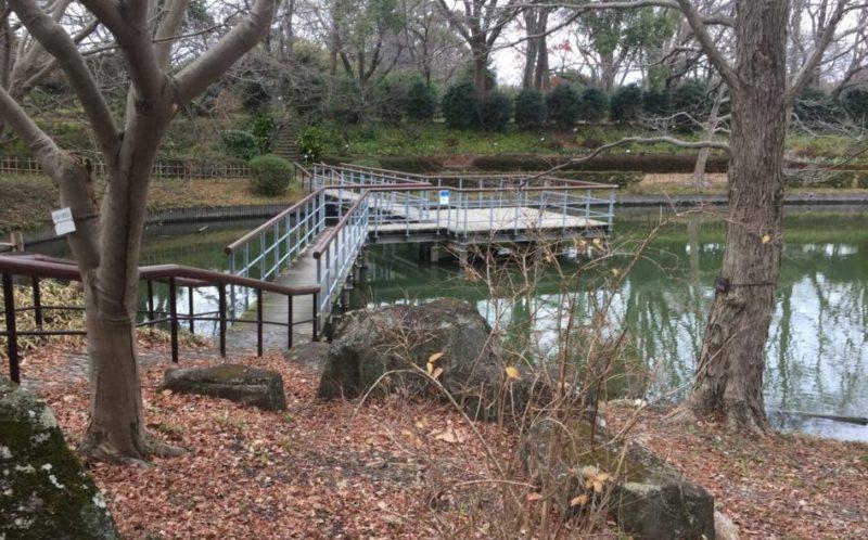 飯田公園の池