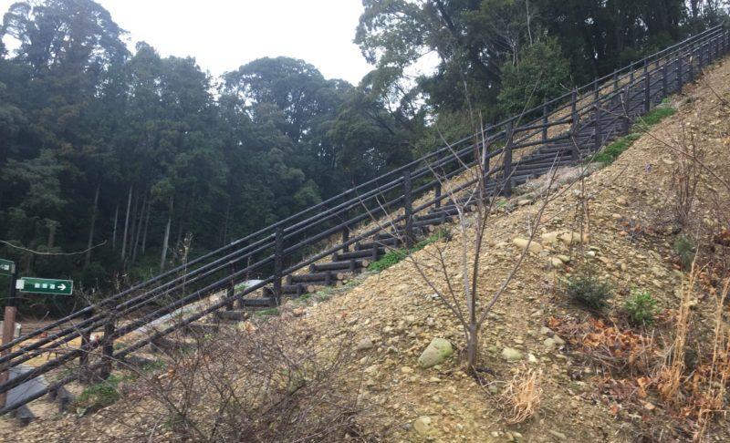 みつかわ夢の丘公園の散策道