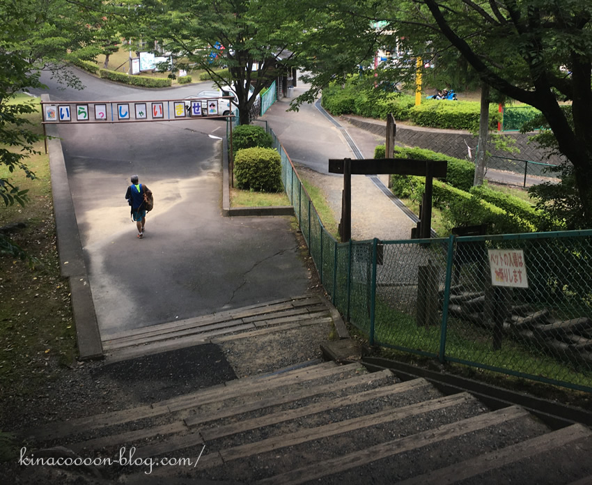 浜北森林アスレチックの入り口近くの階段