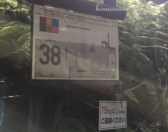浜北森林アスレチックの38番