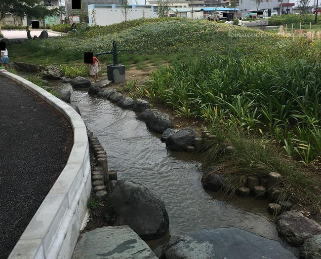 今之浦公園のじゃぶじゃぶスポット(小川)