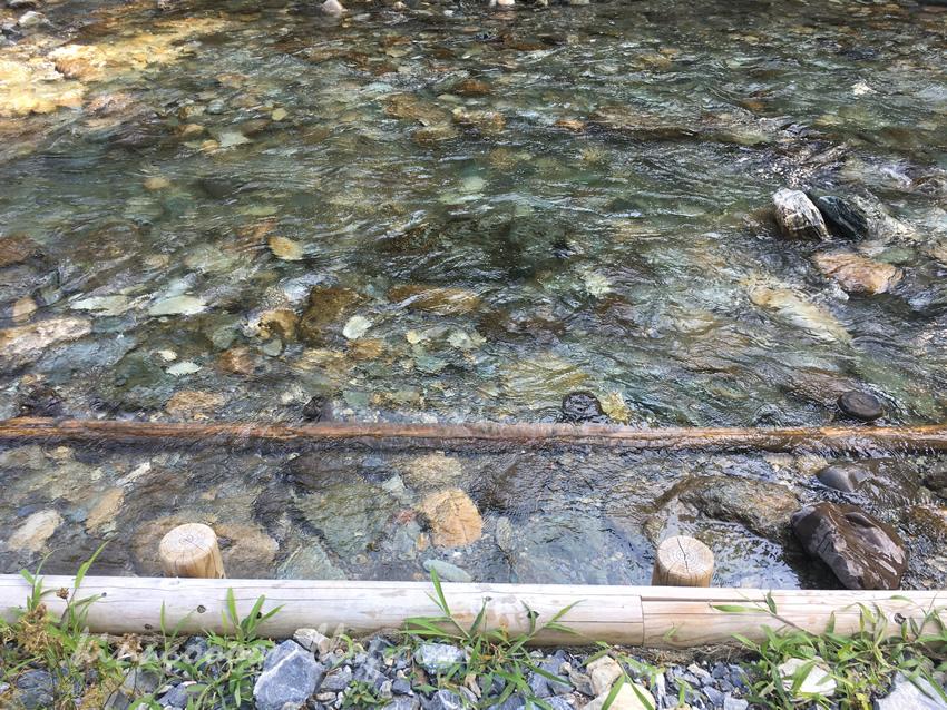 くんま水車の里の阿多古川の水の透明度